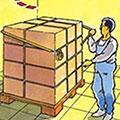 Sfoara pentru logistica si transport